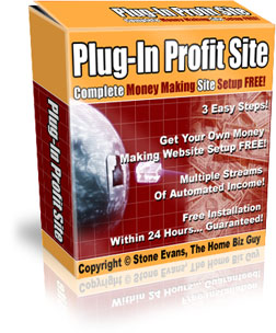 Plug In Profits site