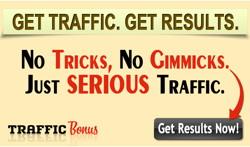 Traffic Bonus
